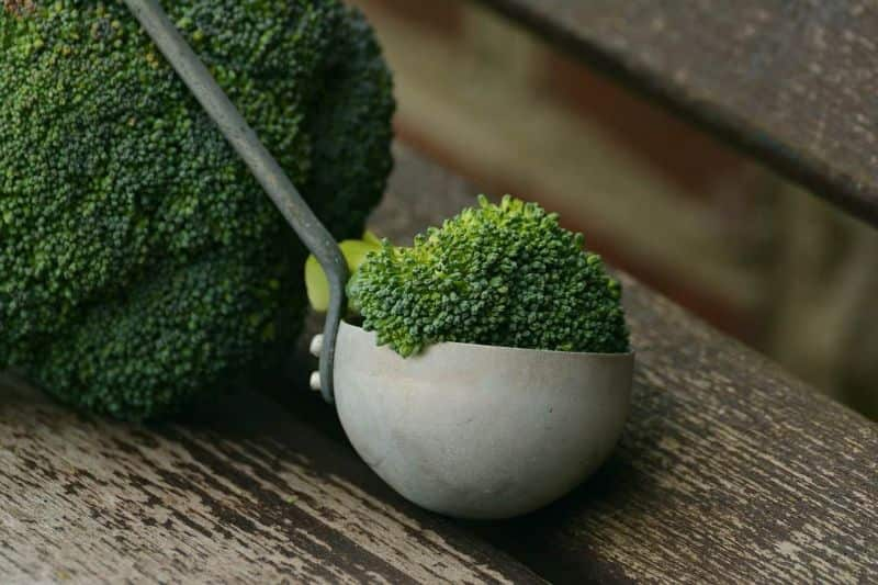 National broccoli day,                 broccoli vegetables healthy                broccoli vegetables healthy