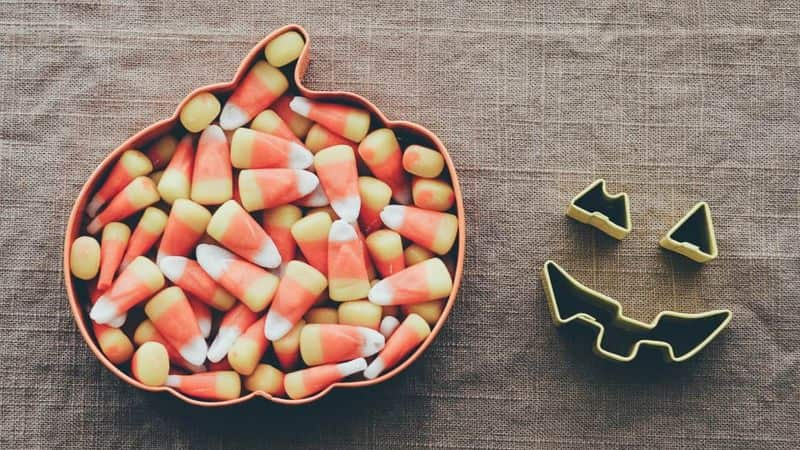 National candy-corn day,                 candy candy corn sweet