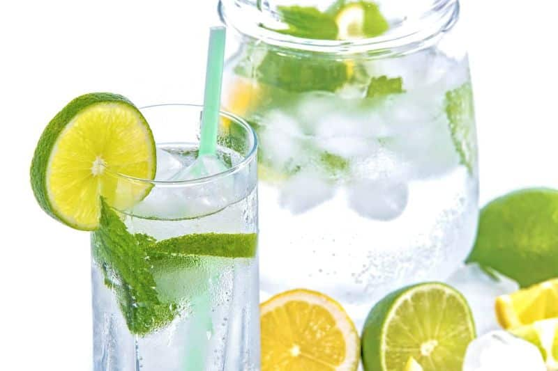 National lemonade day,                 water lime mint