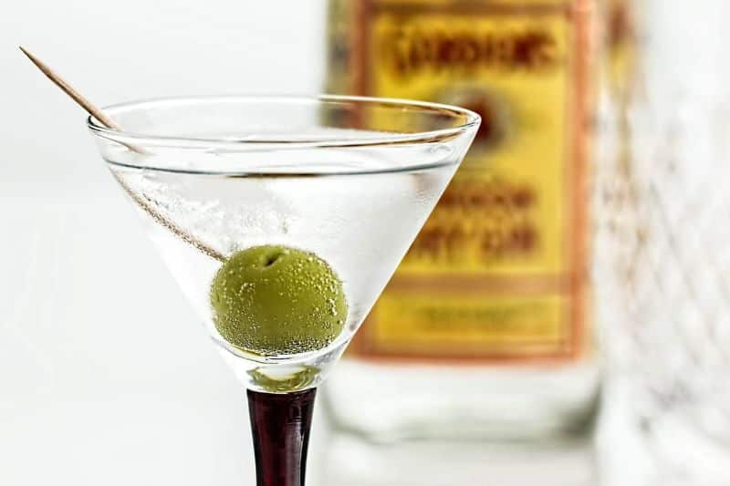 martini cocktail martini gin