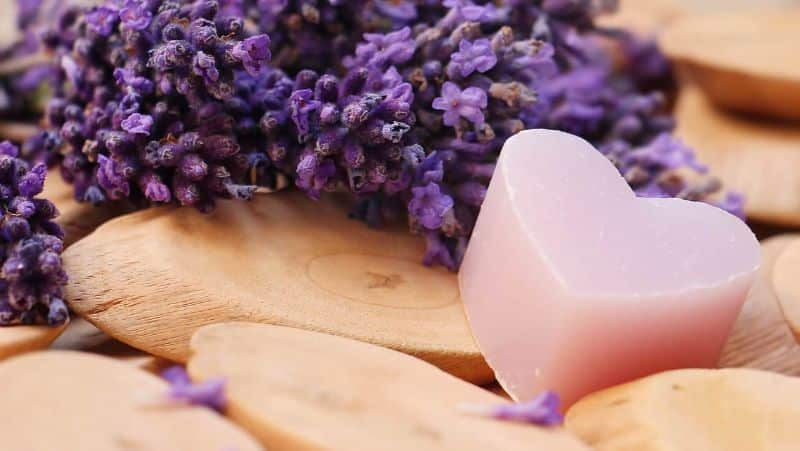 purple-heart lavender heart wood