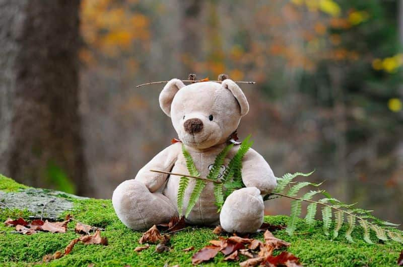 teddy-bear bear bear children toys